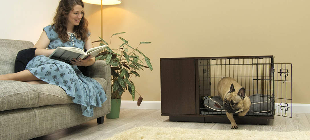 A Fido Studio in walnut will look great in your living room