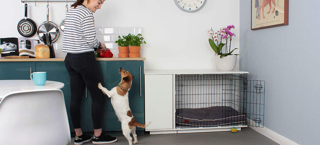 The Fido Studio looks great in any room in the house