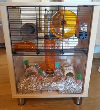 Une belle cage meuble