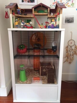 Notre cage