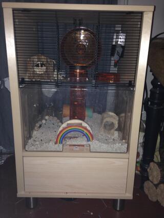 Super cage