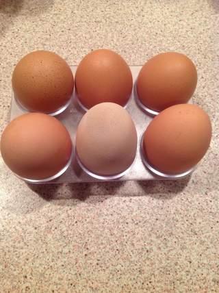 Delicious fresh eggs