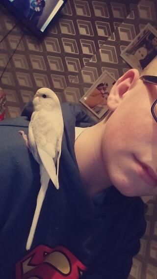 Me and the budgie (Polly) relaxing