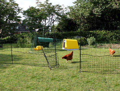 Omlet Chicken Fencing - 105ft - Inc. Gate, Double Spike Poles and Guy Lines