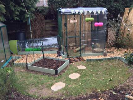 Walk In Chicken Run Extensions Chicken Coops And Pet