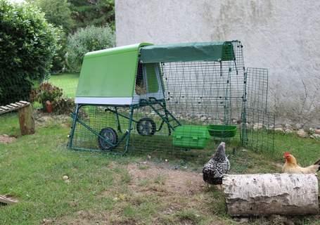 Le poulailler Eglu go up de mes poules naines