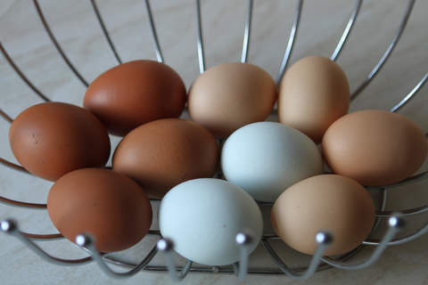 Lovely coloured eggs from my rescued girls