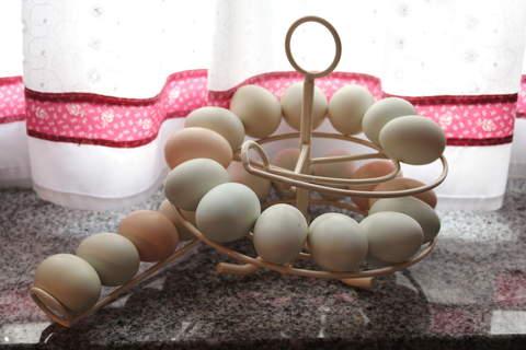 great egg skelter