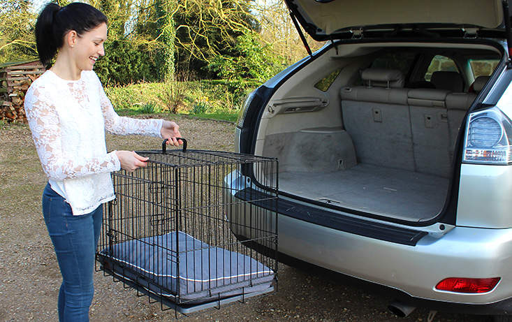 Fido Classic is easy to put up and carry making it ideal to use in the car.