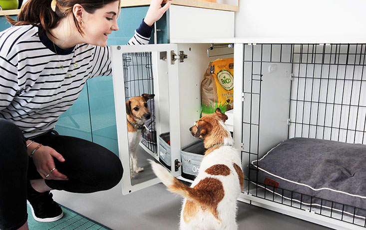 The Fido Studio's wardrobe keeps all your dogs things tidy