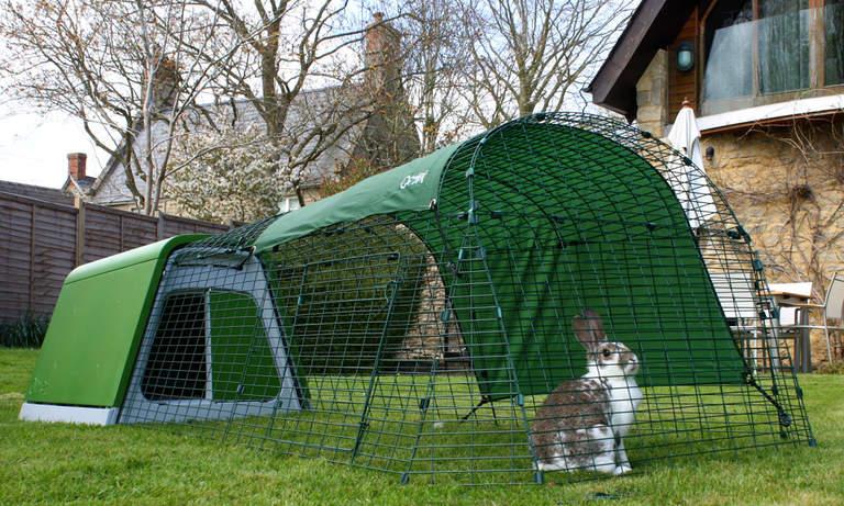 A rabbit sitting in the run of the Eglu Go Rabbit Hutch