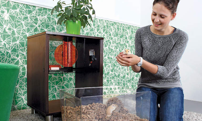 Qute Hamster and Gerbil Cage makes iteasy to handle your pets
