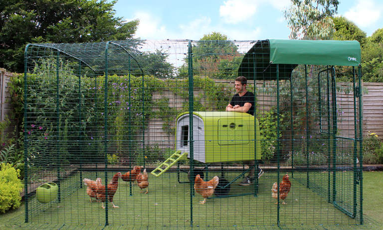 Extend your Walk in Chicken Run with easy to add extensions